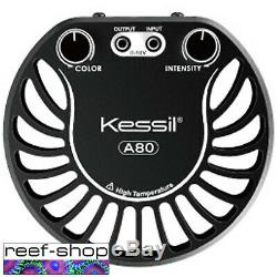 2x Kessil A80 Tuna Blue LED Lights & Spectral Controller X & Link Cable Bundle