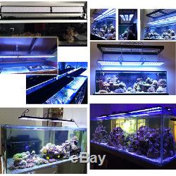 72''LED Aquarium Marine Light DSunY 6ft Dimmable Lighting For Coral Reef Tank