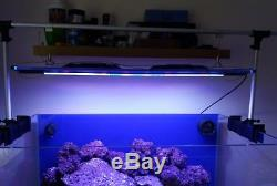 Marine led aquarium lighting
