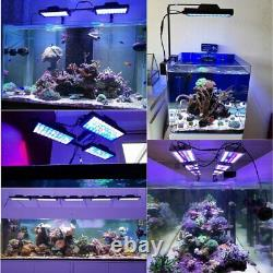 Shannon 16 LED Aquarium Lamp For Lighting Coral Growth With Remote Control